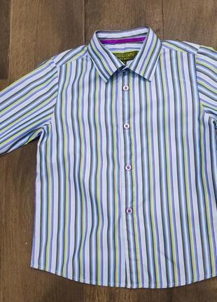 Cтильная рубашка в полоску от ted baker, 3-4 г. новая!