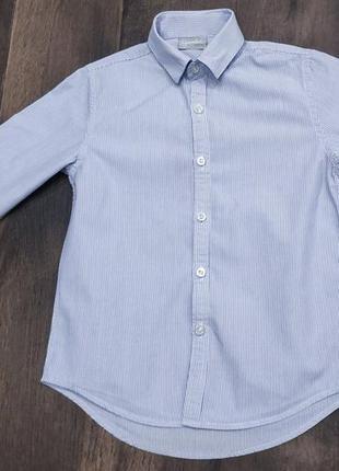 Красивая полосатая рубашка next на 6 лет. новая!