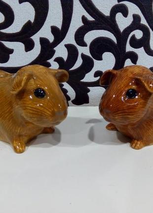Спецовники морские свинки