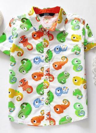 Летняя рубашка  артикул: 7312