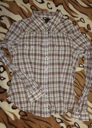 Хлопковая рубашка на кнопках