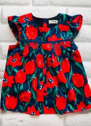 I love next новая   стильная блузка на девочку  4-5 лет
