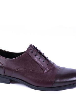 Бордові шкіряні туфлі ікос!-стильне чоловіче взуття!