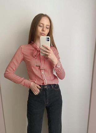 Блуза в смужку