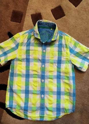Рубашка шведка с коротким рукавом, легкая, next