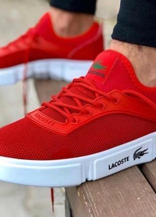Летние спортивные мужские кроссовки кеды мокасины lacoste
