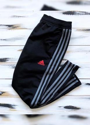 Adidas x fc benfica спортивные штаны
