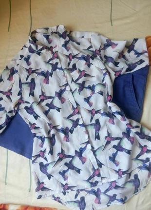 Блуза в птицы