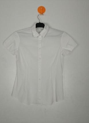 Блузка, рубашка. хлопок. esprit