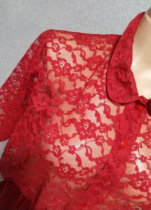 Изысканный боди блузка от тм esmara.