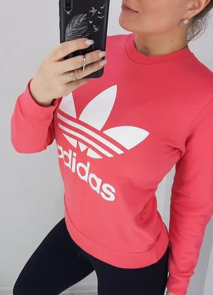 Adidas свитшот оригинал