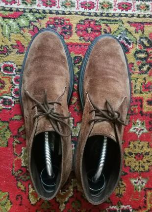 Мужские ботинки дезерты tods