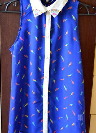 Блуза в птички с красивой спинкой
