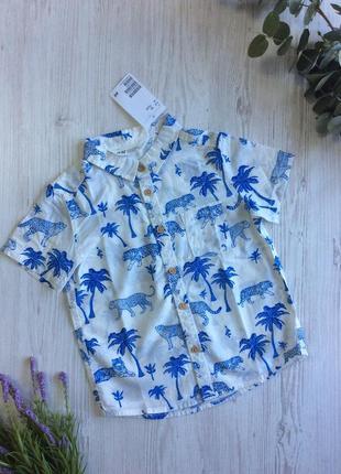 Рубашка мальчику h&m
