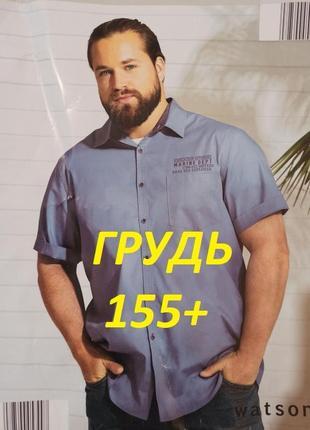 Грудь 155+см стильная котоновая бизнес - рубашка watsons germany