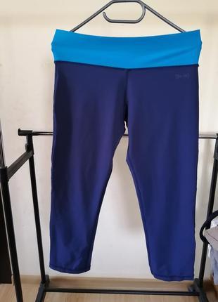 Женские спортивные капри синие с голубыми вставками usa pro