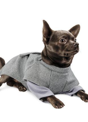 Жакет-пальто для собак шаттл