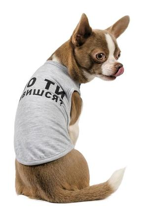 Майка-борцовка для собак