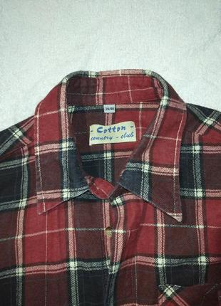 Мужская рубашка от cotton club