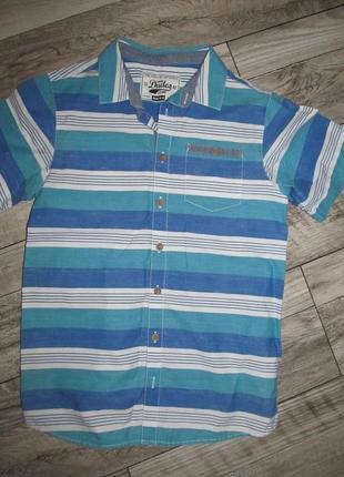 Рубашка от dudes рост 146см, 10-11 лет