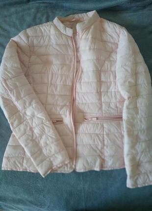 Куртка пудра курточка