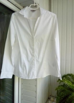 Коттоновая белая рубашка блуза большого размера батал