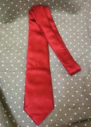 Галстуки красный на фотосессию подарок