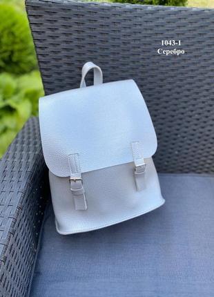 Рюкзак серебро