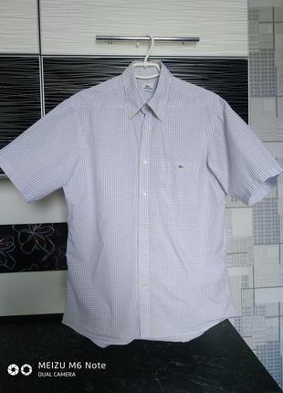 Рубашка,шведка lacoste.