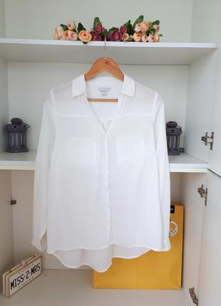 Хлопковая блузка рубашка длинный рукав amisu
