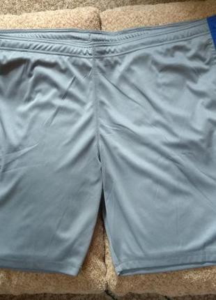 Спортивные мужские шорты crivit германия 4xl (68/70 евро)