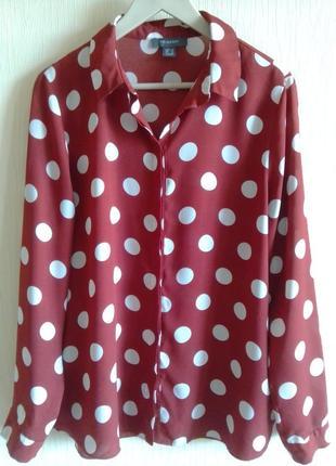 Очаровательная блуза в горох