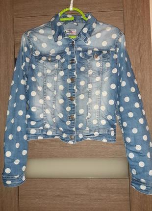 Джинсовая куртка на лето terranova в горошек s-m
