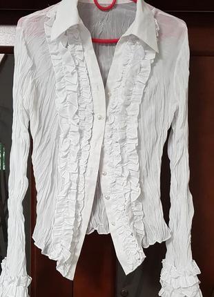 Блуза,  рубашка,  в школу,  на работу