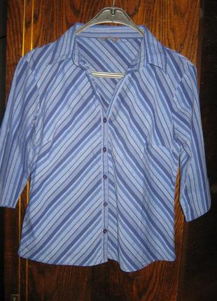 Рубашка блуза полоска хлопок dunnes