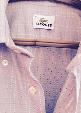 Рубашка lakoste оригинал,стильная,прямой крой