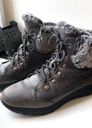 Зимние ботинки на шнуровке кожа низкий ход