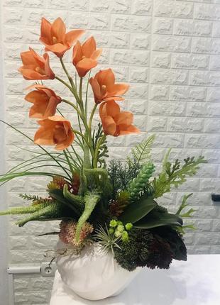 Цимбидиум (орхидея) в кашпо-ракушке