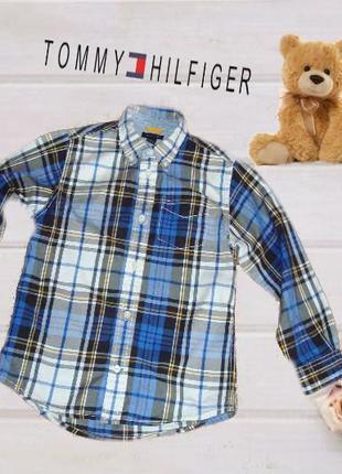 🐼🐼tommy hilfiger 6 оригинал стильная рубашка дл рукав для  модника 116/122🐼🐼
