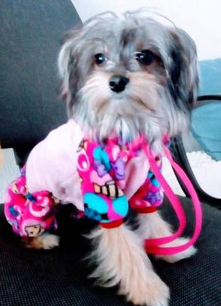 Велюровый комбинезон для собаки