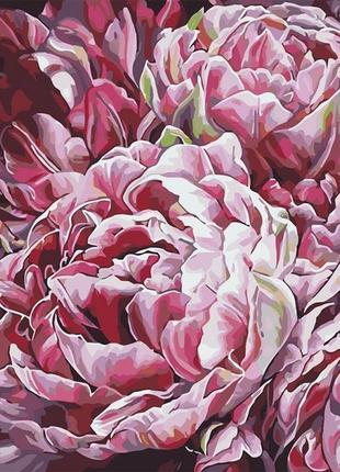 Картины по номерам буйство красок 2 худ. диана тучс кно3014