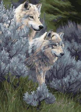 Картина по номерам пара волков 2 40*50 кно2435