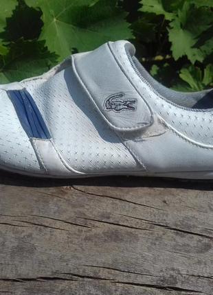 Женские белые кожаные кроссовки кеды lacoste