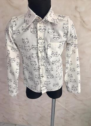 Хлопковая рубашка с котами на кнопках.