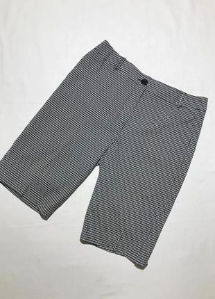 Женские стильные шорты cleo
