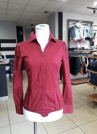 Бодік,блузка,сорочка