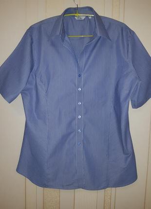 Базовая натуральная женская приталенная стройнящая рубашка disley блузка в полосочку