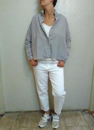 Рубашка,блузка,блуза,полоска,белая,оверсайз,хлопок