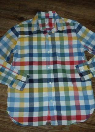 Gap котоновая рубашка на 12 лет