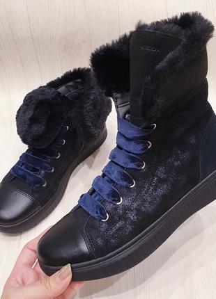 Geox -  кожаные деми ботинки